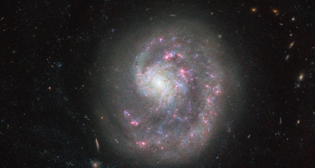 Galaktika NGC 4625. ©ESA/Hubble & NASA