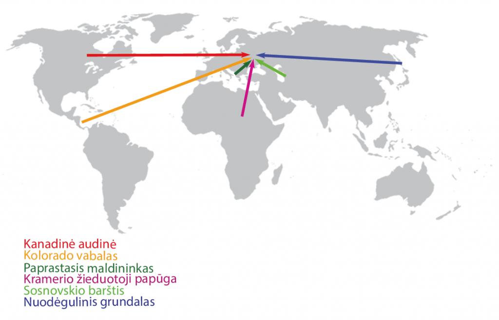 Invazinių rūšių kilmės žemėlapis Šaltinis: http://mricha14.github.io/birdsoundsproject/img/world_map.png